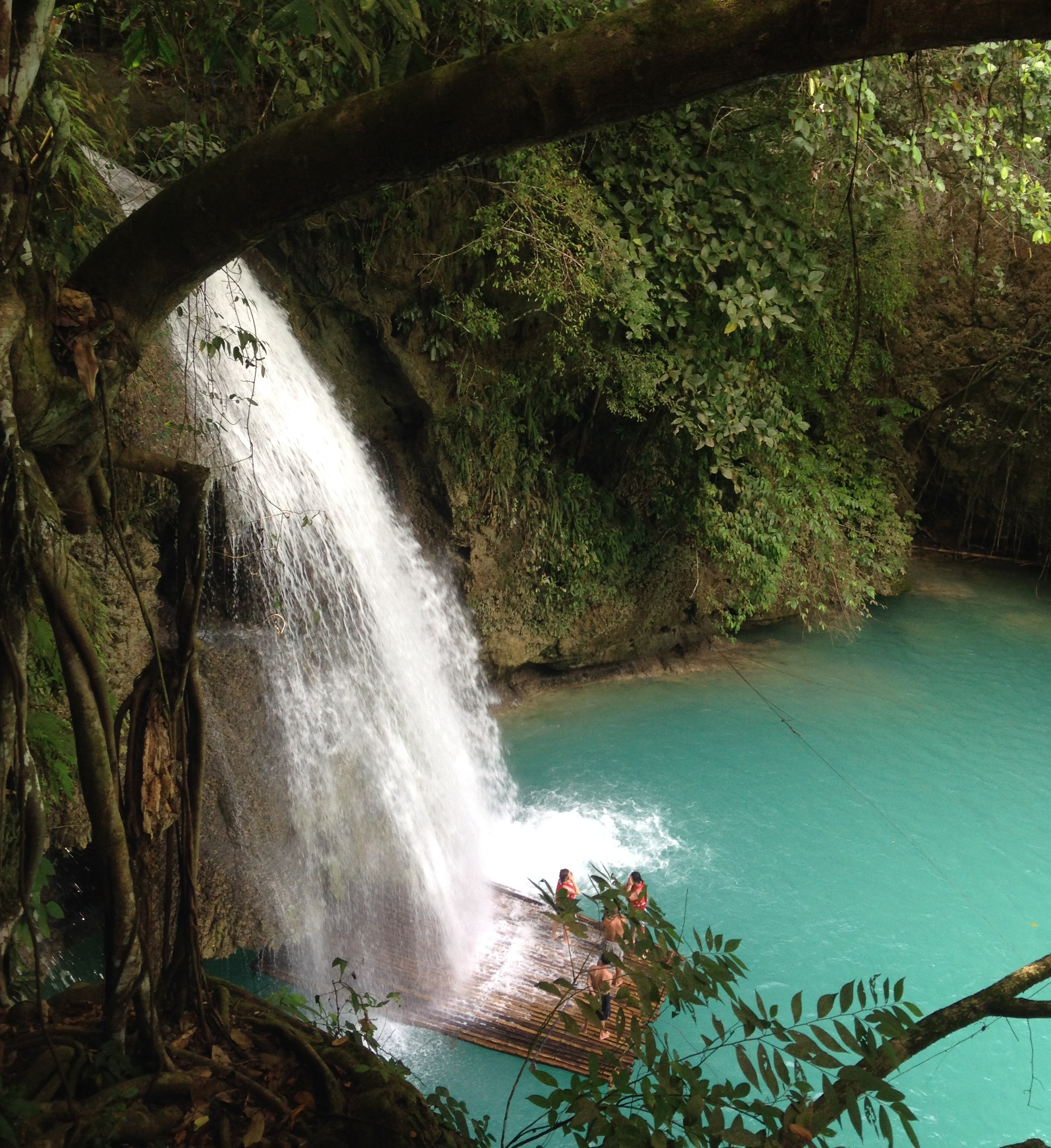 Fall In Love With Kawasan Falls A Complicated Melody